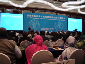 Crashing Monsanto's Pesticide Party in Beijing